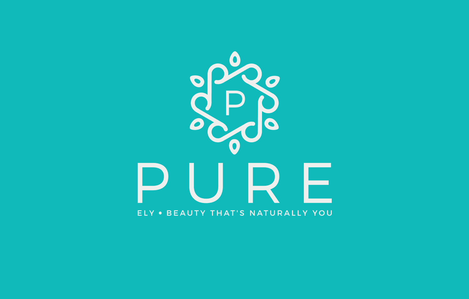 Pure Ely logo explanation