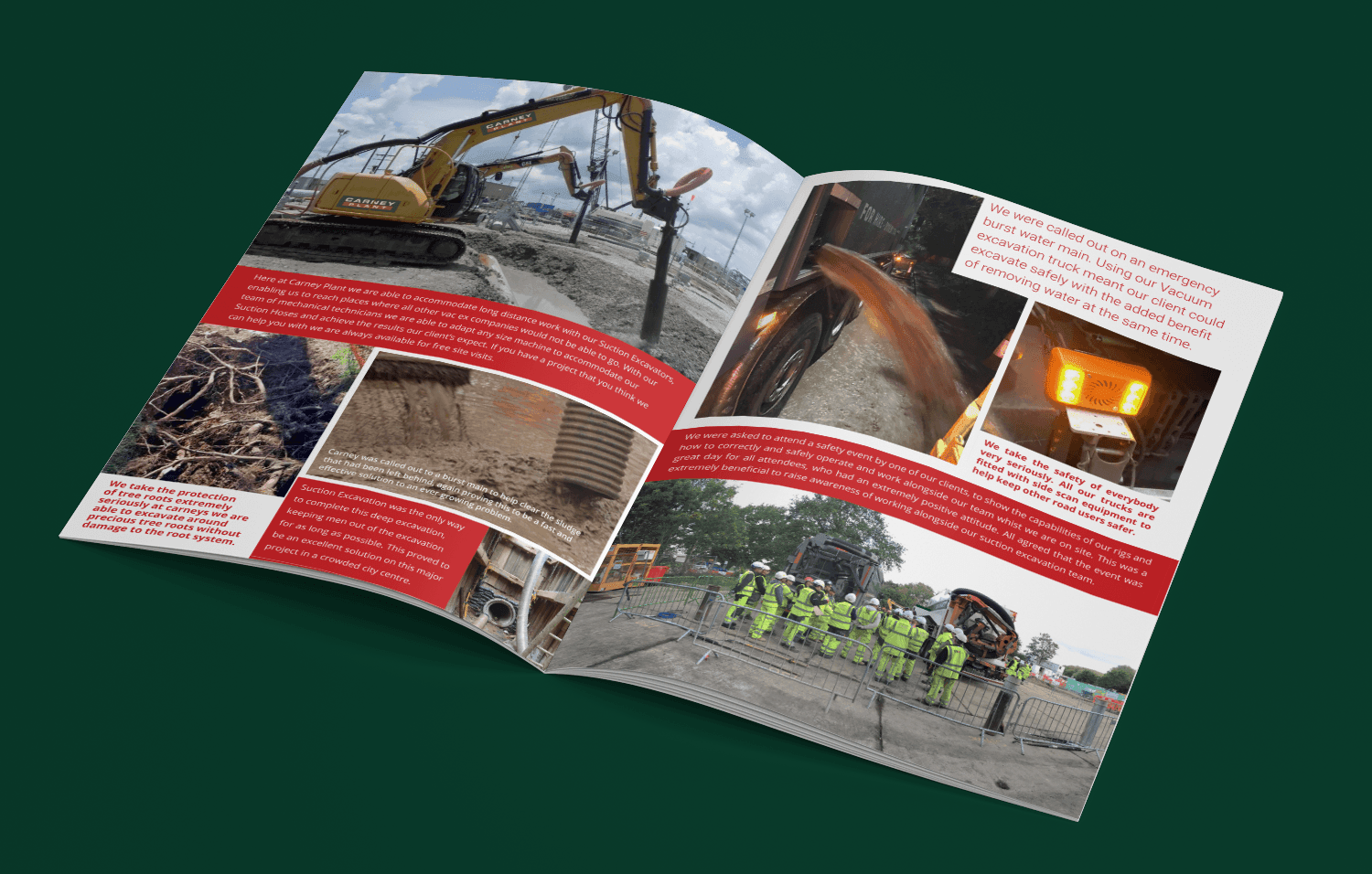 Carney Plant Brochure