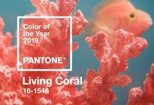 Pantone's colour of the year 2019 - Living Coral